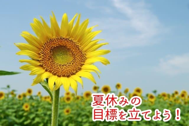 幼稚園の夏休みの過ごし方。年少さんでもできる生活目標とママの目標。