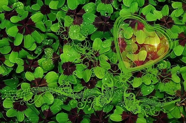 運がいい人には誰でもなれる! ラッキーが見つけやすくなる思考法。