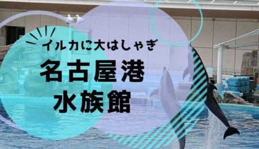 名古屋港水族館に赤ちゃん連れで行くならベビーカーと授乳室に注意!おすすめの回り方や見どころ。